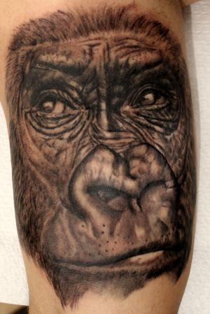 gorillaz_2020